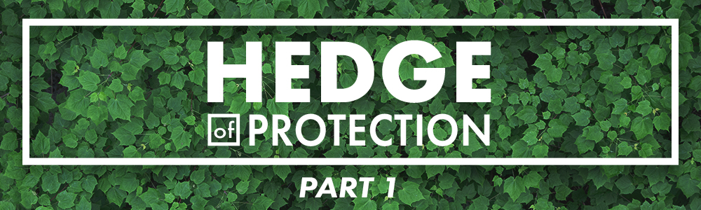 Hedge of Protection // Part 1
