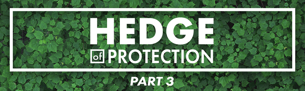 Hedge of Protection // Part 3